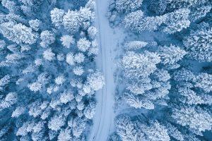 Una foresta innevata vista dall'alto