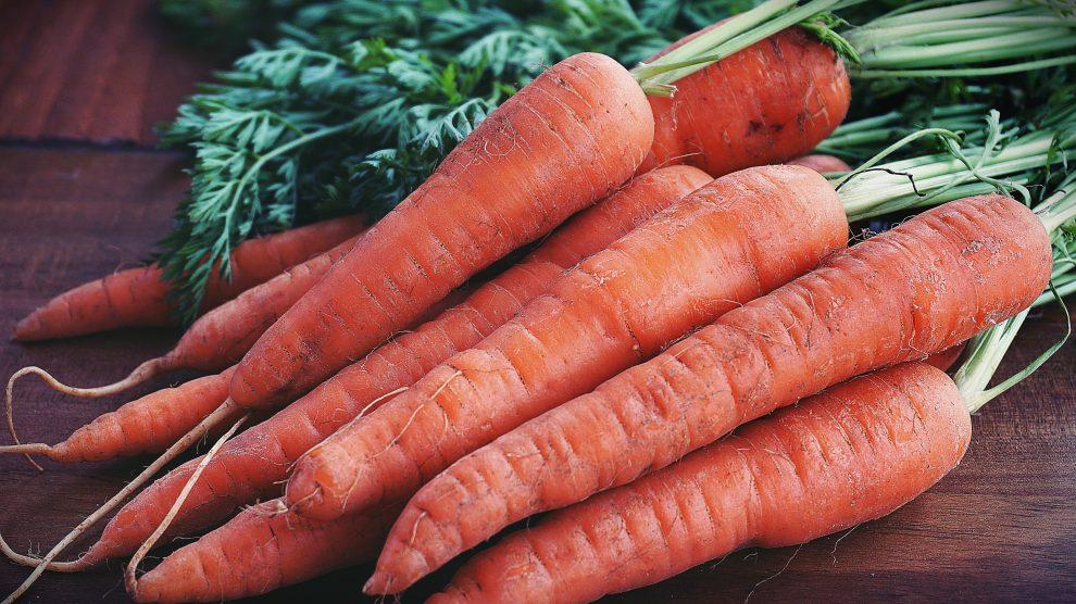 Una decina di carote poggiate su un tavolo